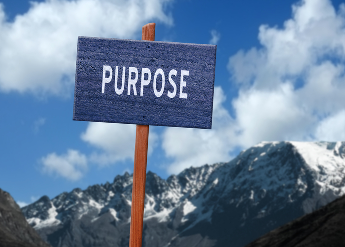 Are You a Purpose-Driven Leader?